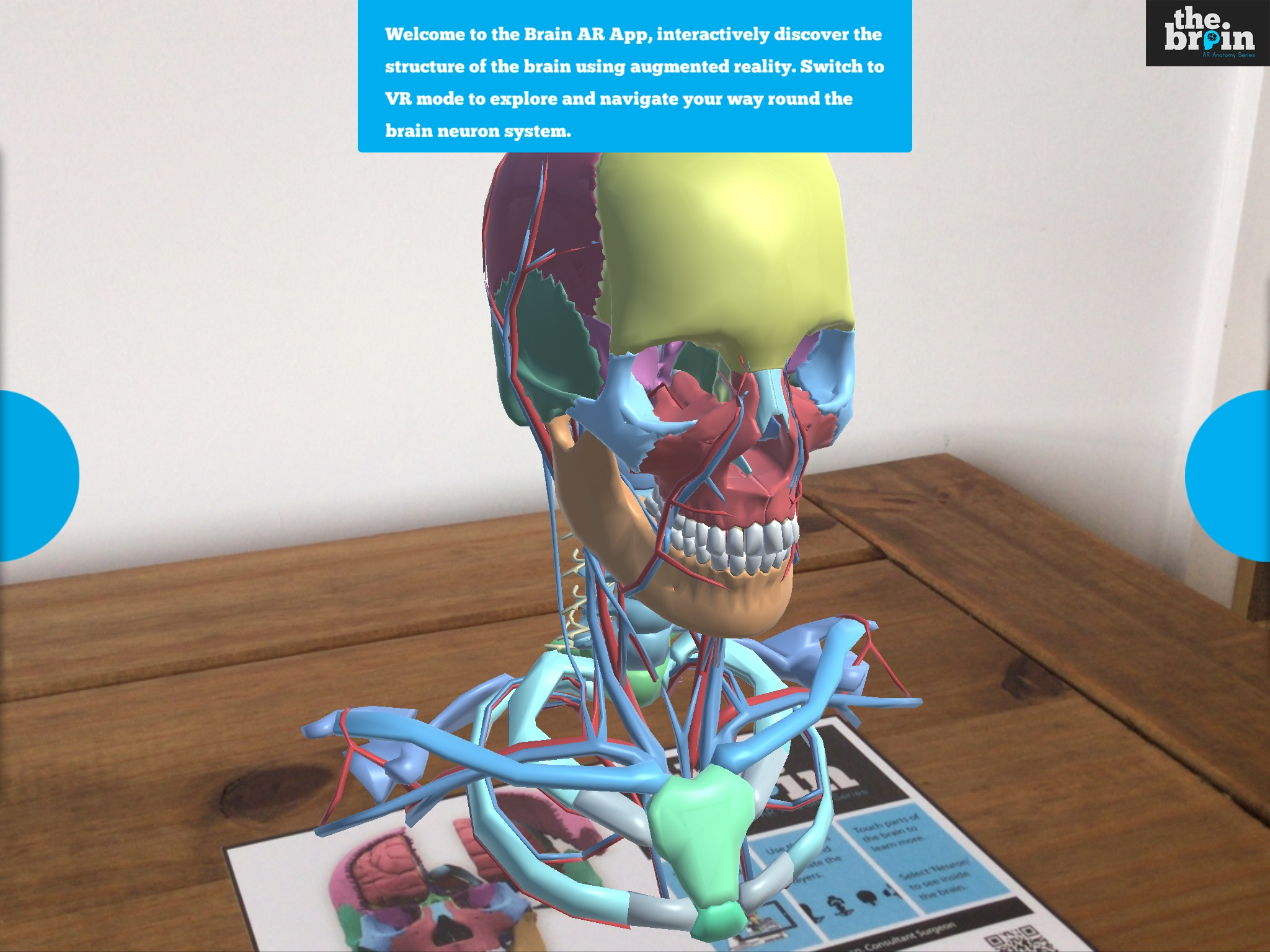 Explore the Human Brain in Augmented Reality - Harmony Studios